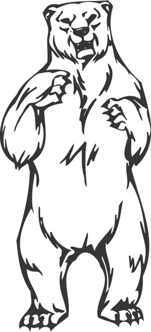 front standing bear animal animal mascots am 035 sgd